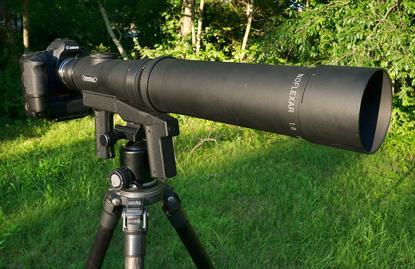 Novoflex Super Telephoto Lens Kevin Davis Photography
